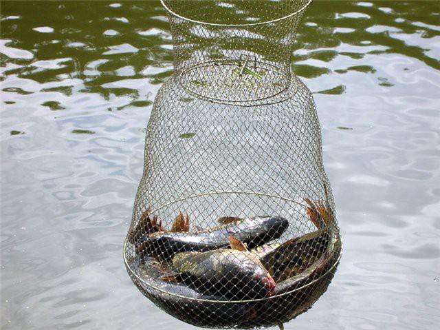 Из чего сделать садок для рыбы своими